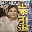 shimizufumika-koufuku-3