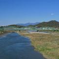 300px-Ashikaga_Watarase_River_Naka_Bridge_3